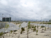 Completed roads and landscaping in Eko Atlantic