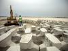 A field of building blocks
